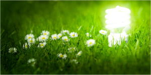 green utility